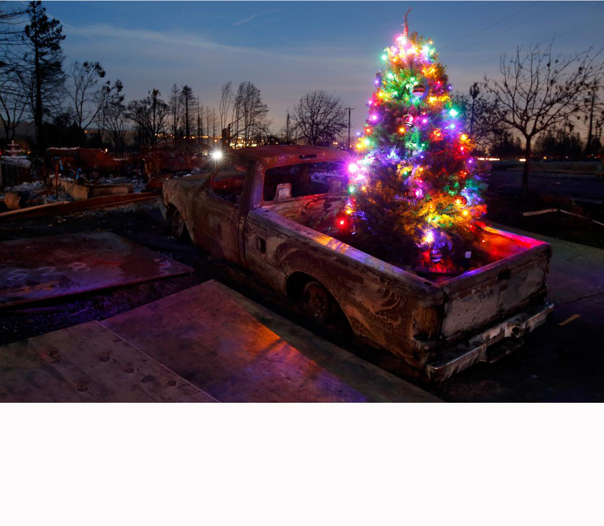 Picture of a lit Christmas tree in the back of a burned pickup truck.  Taken after the Tubbs  fire