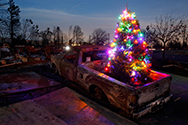 A burned pickup truck in Coffee Park.  There is a lit up Christmas tree in the truck bed.